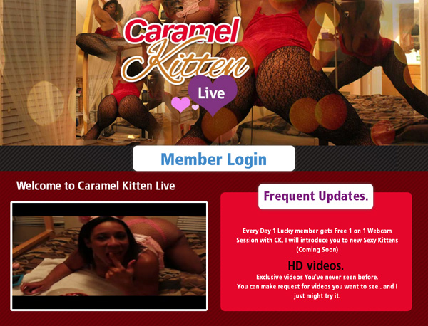 Caramel Kitten Live Hd