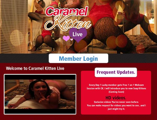 Free Caramel Kitten Live Account