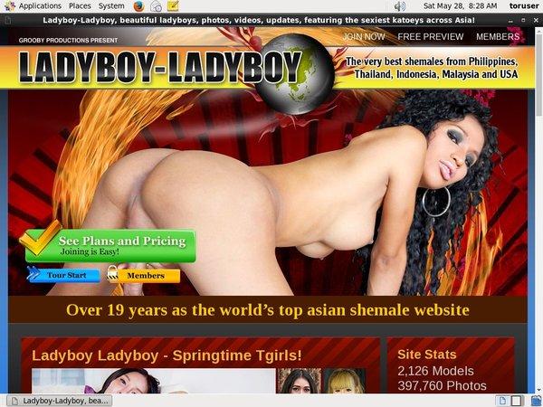 Discount Ladyboyladyboy Code