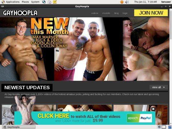 Free Gayhoopla.com Accs